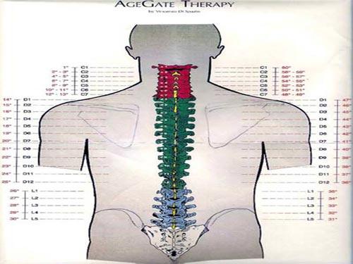 mappa-ager-tecniche-corpo-mente-psicocorporee-bologna