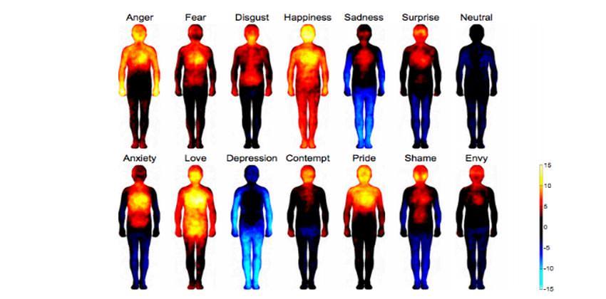abitare-consapevolmente-nel-corpo-2a-parte-tecniche-psicocorporee-bologna-2