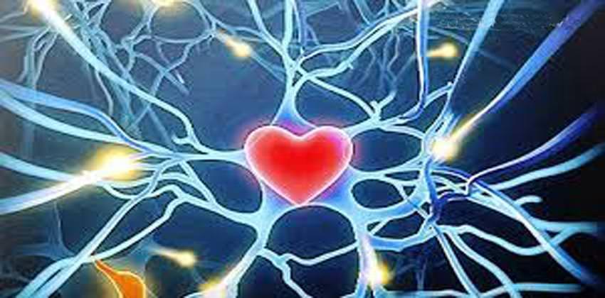 aprire-il-cuore-come-fare-tecniche-psicocorporee-bologna-2