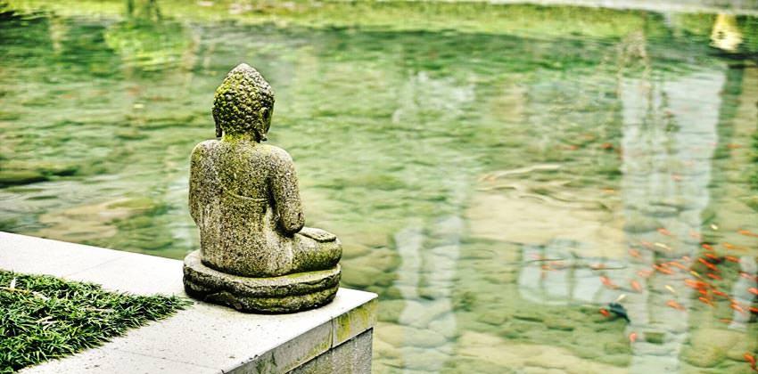 vipassana-una-meditazione-alla-portata-di-tutti-3